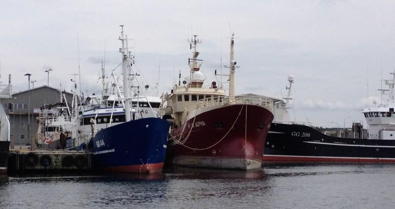 fiskeback12juli_2015-3 - 11