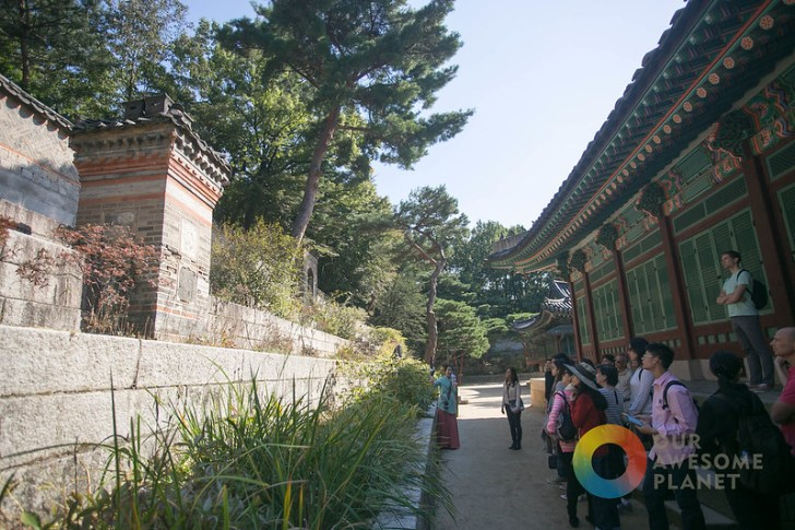 Changdeokgung - KTO - Our Awesome Planet-81.jpg