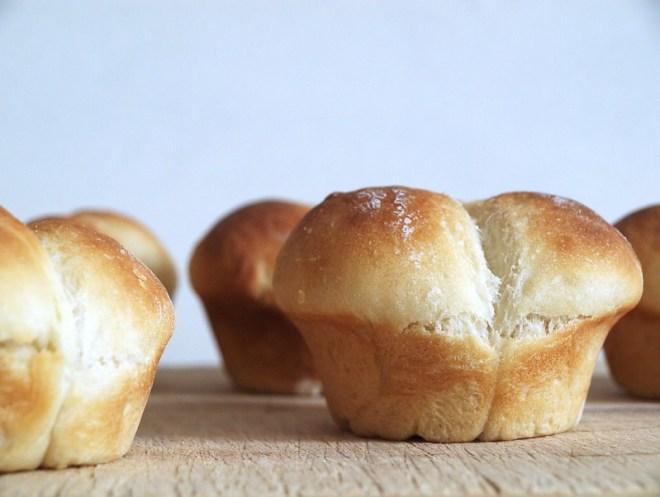 Brot (10)