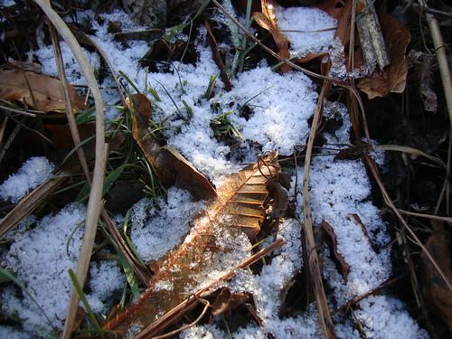 Schneereste in Gijang