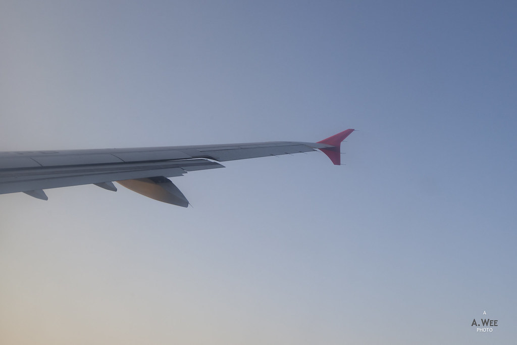 Wings of the A321