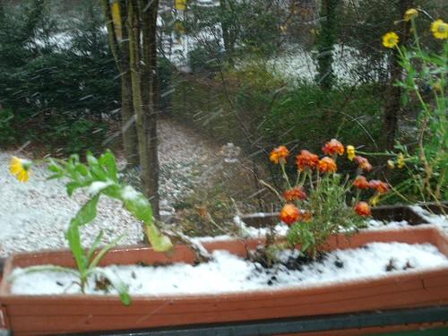 Balkon im Schnee 7