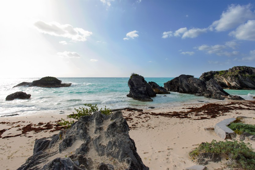 Johnson's Bay Beach, Bermuda.