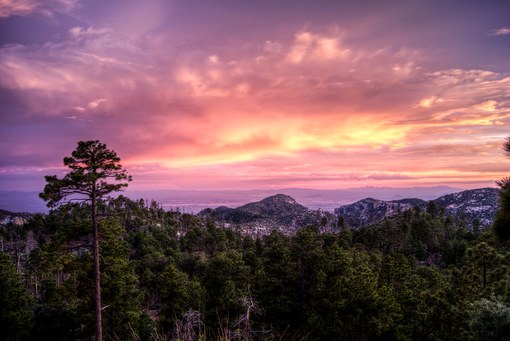 1307 Sunset