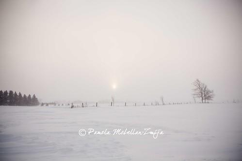 20140107-328C2924-WM by {Pamela Zmija Photography}