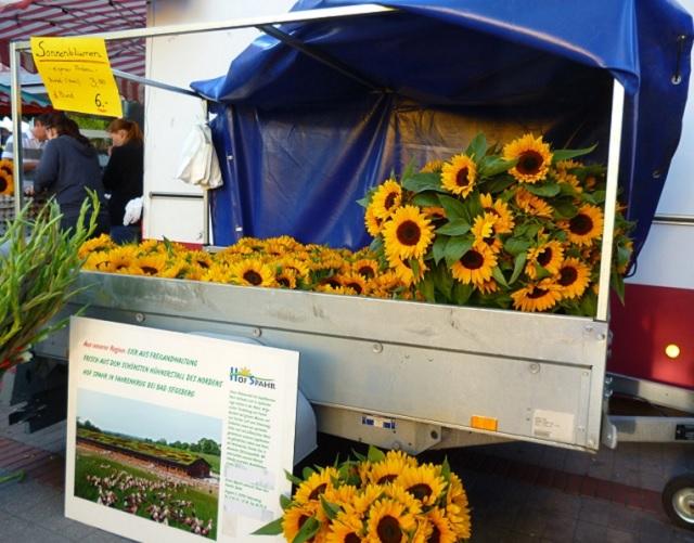 Sonnenblumen auf dem Markt