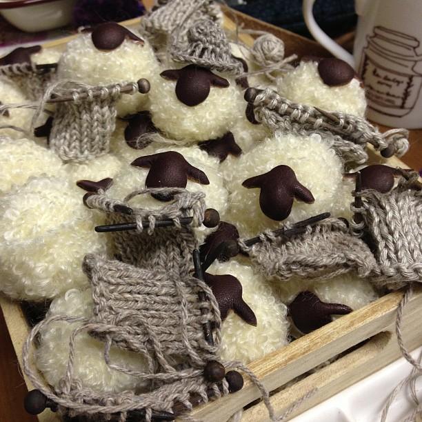 今日で七月終わり〜。羊ちゃんも秋に向けて編み物してます〜(^。^)