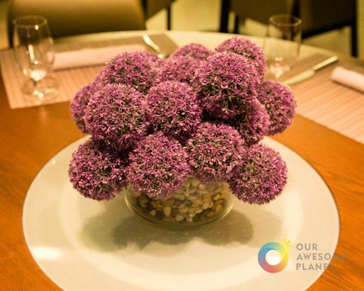 Allium-40.jpg