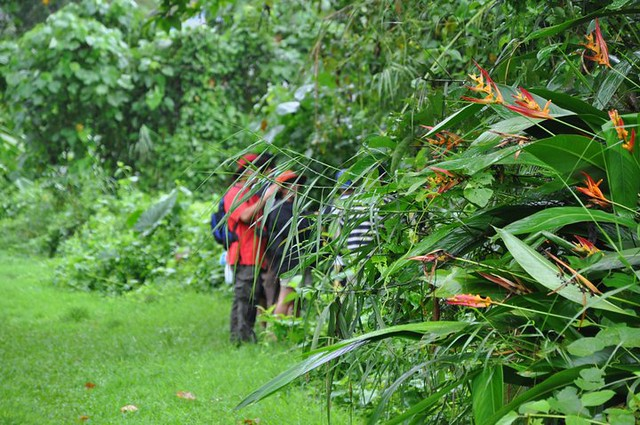 Flora Biodeversity Class
