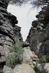 walking track Pinnacle (4)
