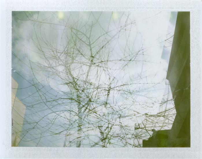 (double) exposure