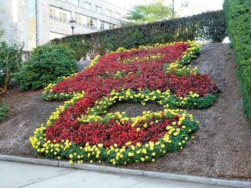 Even the landscaping has spirit