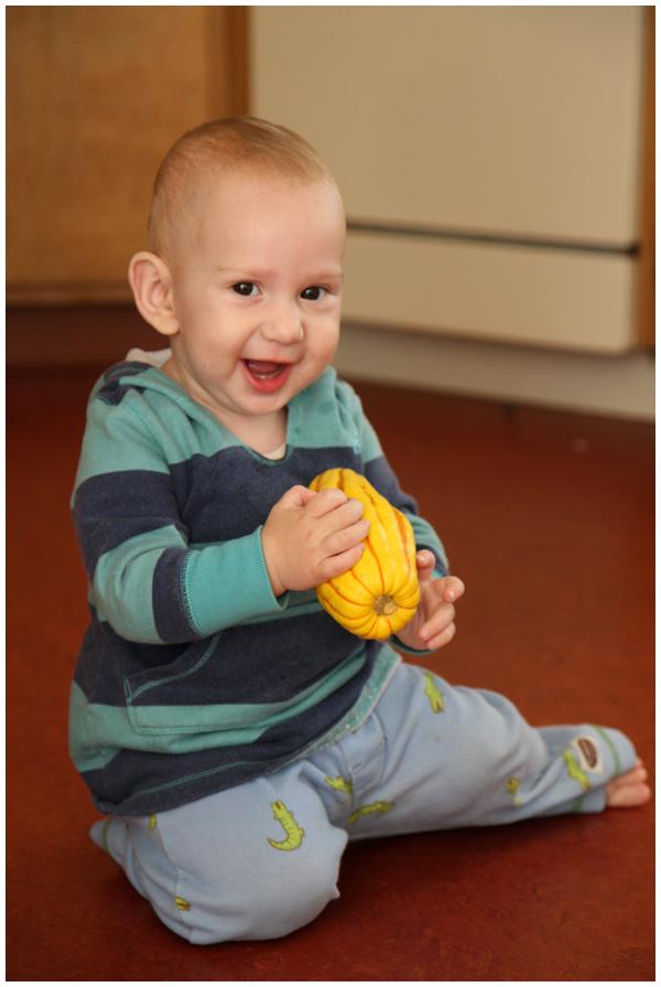 Baby loves delicata squash