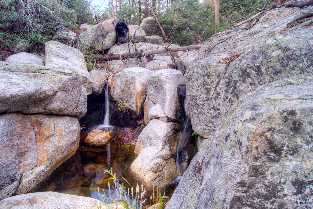 1307 Small Falls