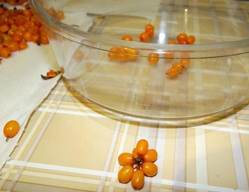 Reţete în imagini - sirop de cătină cu miere