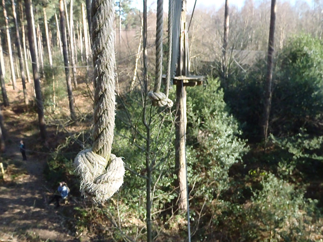 Go Ape rope crossing 640
