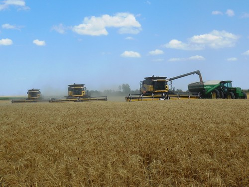 3 combines together!