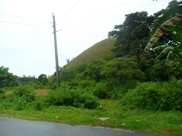 shy hill2