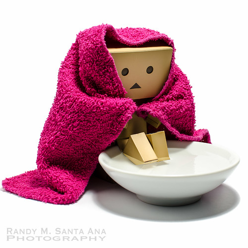Danbo In From The Cold.