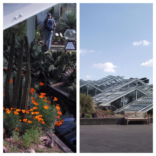 Prince Charles Conservatory - Kew