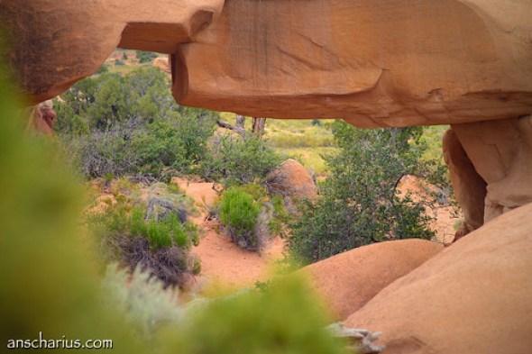 Devils Garden # - Nikon D800E & AF-D 1,4/85mm