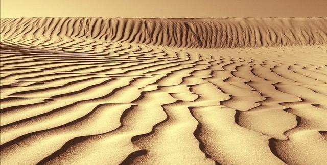 20070529   Death Valley National Park, California 066a