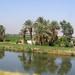 Nil close to Luxor
