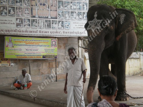 Mahalingaswamy Temple, Thiruvidaimarudhur