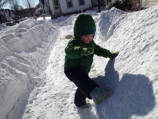 trying to climb the snowbank.