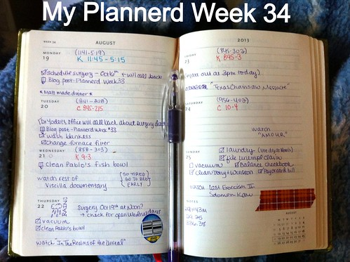 My Plannerd Week 34