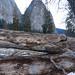 Yosemite8
