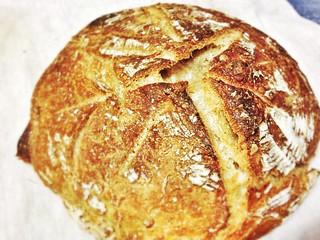 sourdough pain de compagne