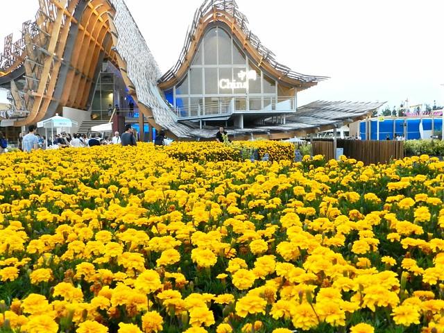 Expo 2015 Cina