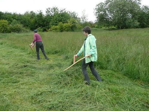 learning to scythe