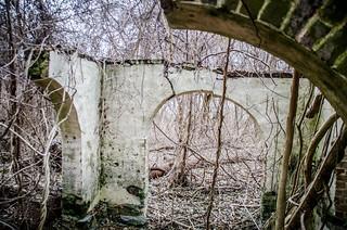 Glenn Springs Archway Ruins