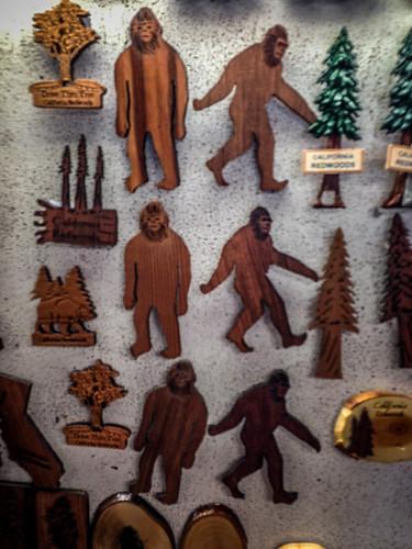 Redwoods and Elk-018