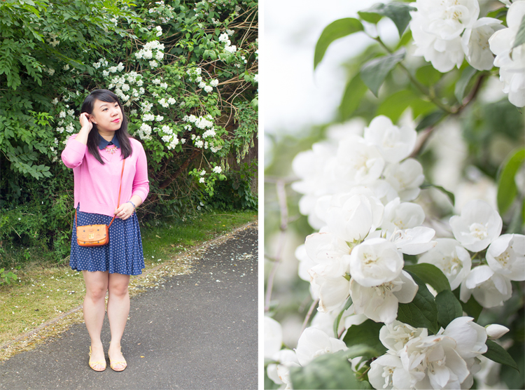 Mcm outfit blossom
