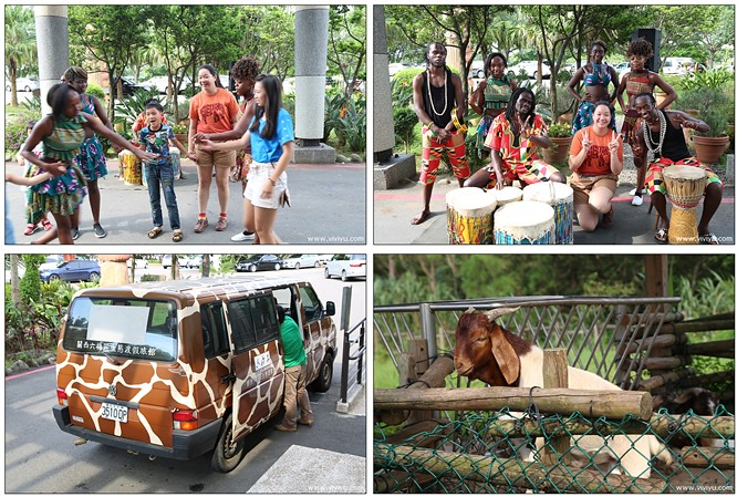 六福村,六福莊,動物園動物餵食秀,新竹,親子旅遊,親子渡假,關西 @VIVIYU小世界