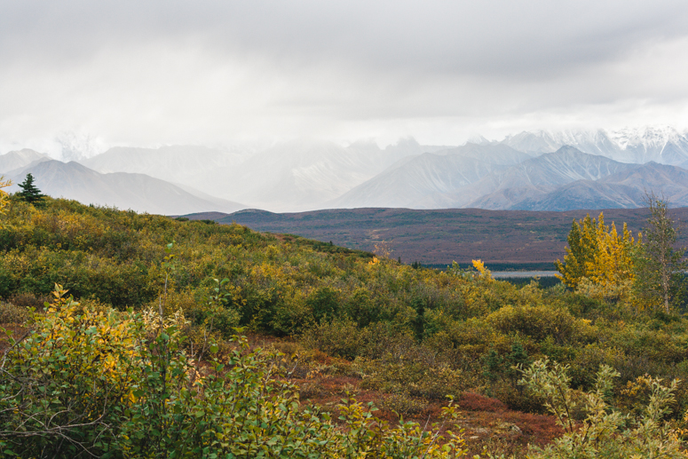 wonder lake campground denali national park