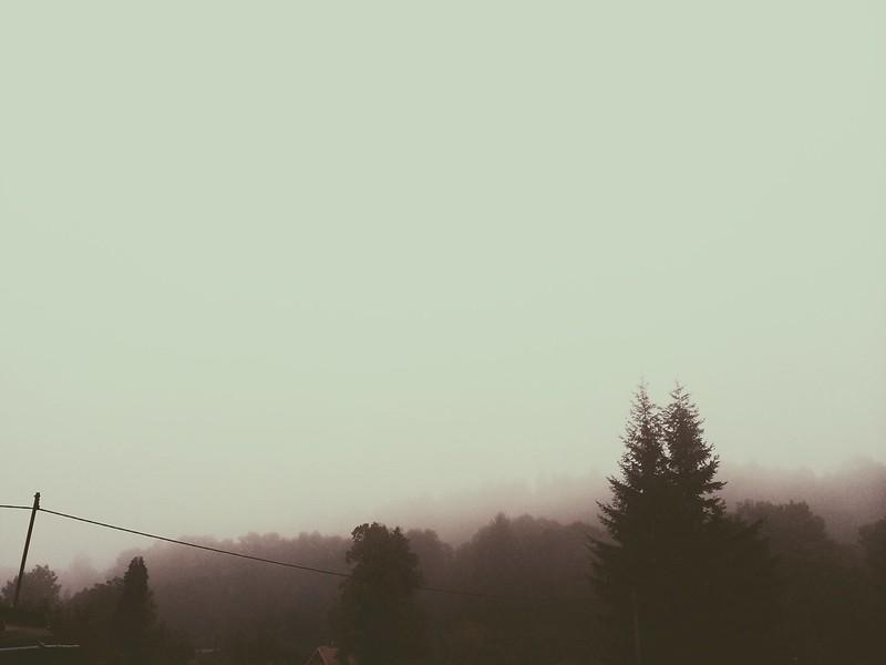 A Foggy Morning (9/5/14)