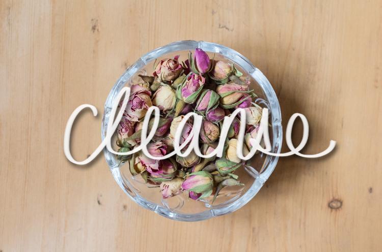 ROSE Cleanse rosebud
