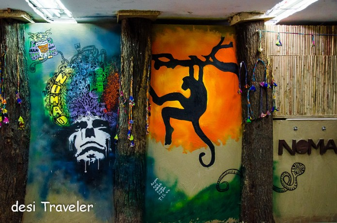 hanuman langur , cobra, owl wildlife street art delhi