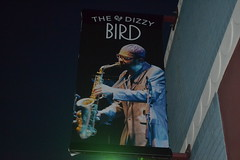 375 The Dizzy Bird