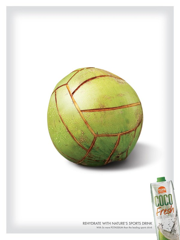 Coco Fresh - Volley Ball