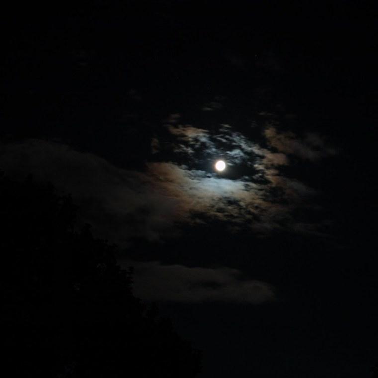 At night (1)