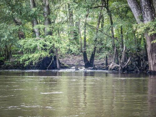 LCU Edisto Messervy to Long Creek-159