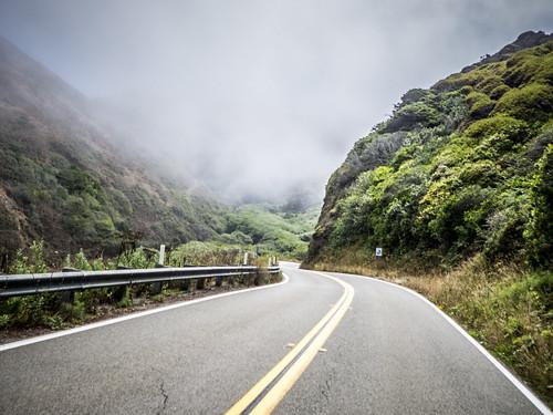 Coastal Redwoods and Fog-022
