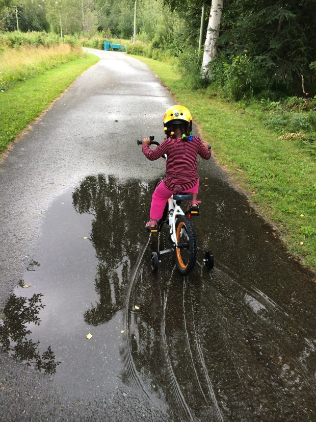 puddle cycling