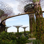 010 Viajefilos en Singapur, Gardens by the bay 04