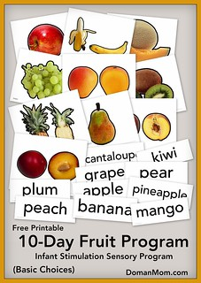 Free Fruit Sensory Program Printables (infant stimulation program)